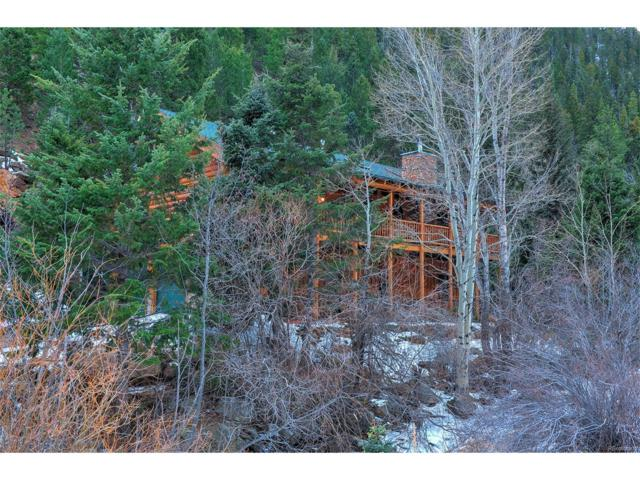 4825 Chicago Creek Road, Idaho Springs, CO 80452 (MLS #7191391) :: 8z Real Estate