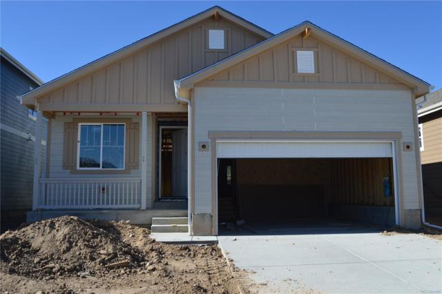 2176 Abigail Lane, Castle Rock, CO 80104 (#7192553) :: The HomeSmiths Team - Keller Williams