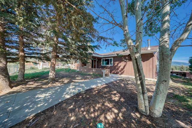 16799 County Road 306, Buena Vista, CO 81211 (#7197083) :: The HomeSmiths Team - Keller Williams