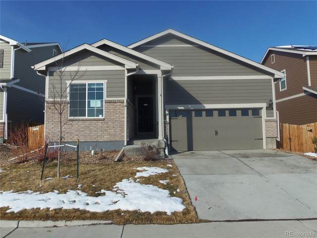 4347 E 95th Drive, Thornton, CO 80229 (#7197483) :: Real Estate Professionals