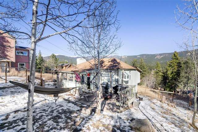 347 Lakeview Road, Bailey, CO 80421 (#7199018) :: The Dixon Group