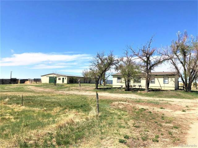 16435 County Road 197, Limon, CO 80828 (#7199520) :: HomeSmart