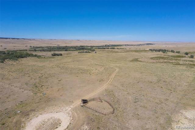40472 County Road 85, Deer Trail, CO 80105 (#7202870) :: The Gilbert Group