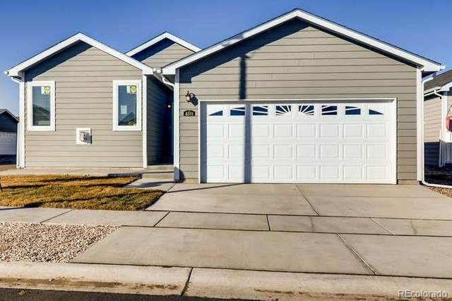 6331 Indian Paintbrush, Frederick, CO 80530 (#7205171) :: Bring Home Denver with Keller Williams Downtown Realty LLC