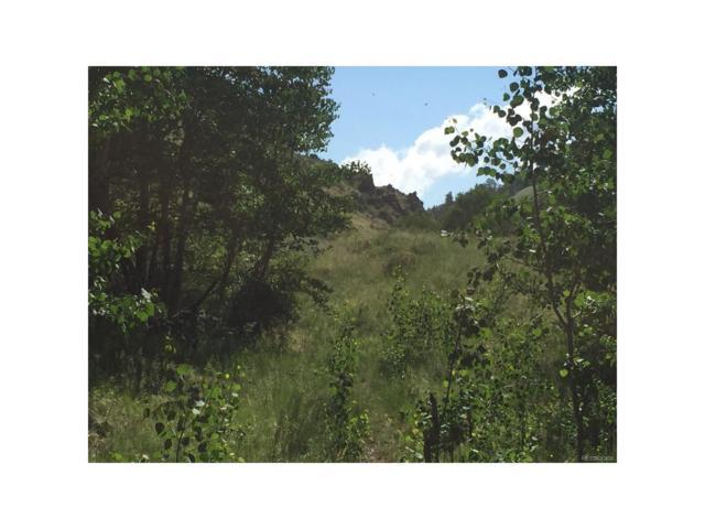 Tbd, Westcliffe, CO 81252 (MLS #7209405) :: 8z Real Estate