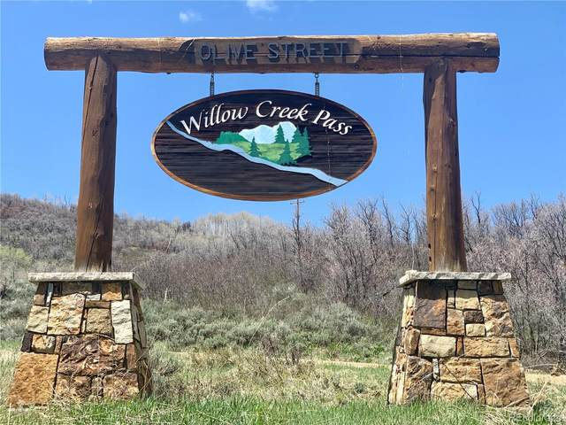 56500 Olive Street, Clark, CO 80428 (#7212275) :: Mile High Luxury Real Estate