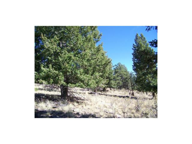 Red Hill Road, Fairplay, CO 80440 (MLS #7212786) :: 8z Real Estate