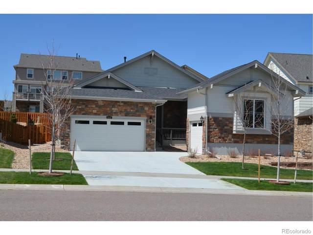 6317 S Muscadine Court, Aurora, CO 80016 (MLS #7213675) :: 8z Real Estate