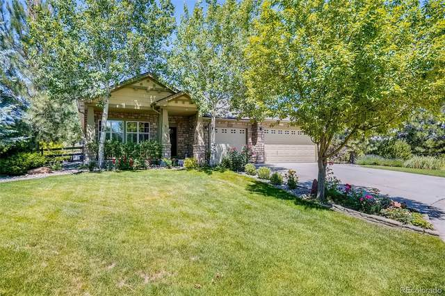 7635 Russell Court, Arvada, CO 80007 (MLS #7217470) :: 8z Real Estate