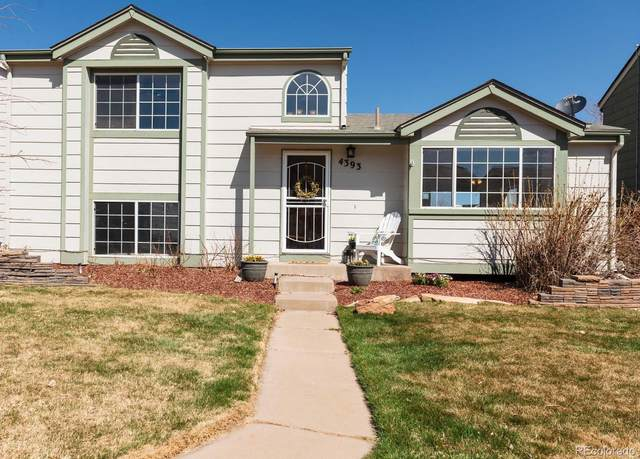 4393 Perth Circle, Denver, CO 80249 (#7218312) :: The Griffith Home Team