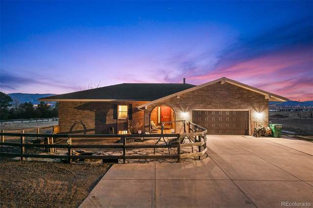 7073 W Pineview Drive, Littleton, CO 80125 (#7220767) :: The Brokerage Group