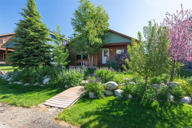 2340 Penny Lane, Steamboat Springs, CO 80487 (#7221228) :: Wisdom Real Estate