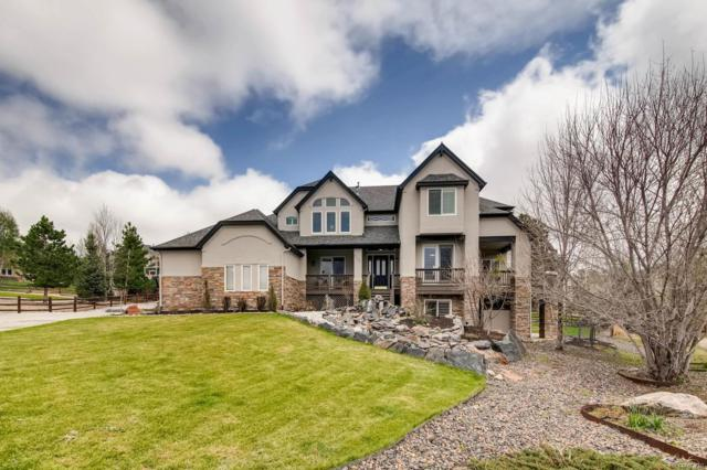 8435 Owl Roost Court, Parker, CO 80134 (#7221637) :: The DeGrood Team