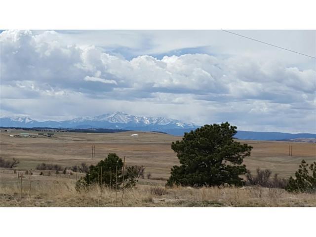 24851 Indian Rock Circle, Elbert, CO 80106 (MLS #7223537) :: 8z Real Estate