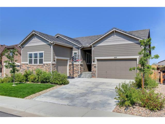 14110 Sierra Ridge Circle, Parker, CO 80134 (MLS #7225187) :: 8z Real Estate