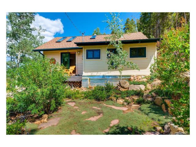 8670 London Lane, Conifer, CO 80433 (MLS #7226769) :: 8z Real Estate