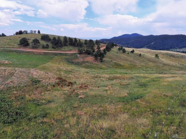 435 Strada Rossa Road, Golden, CO 80401 (#7227205) :: Berkshire Hathaway Elevated Living Real Estate