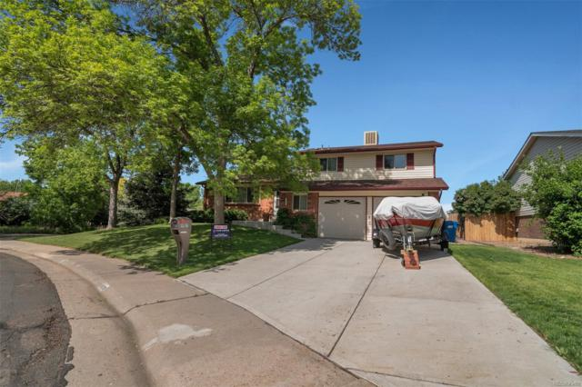 9035 W Swarthmore Drive, Littleton, CO 80123 (#7227882) :: My Home Team