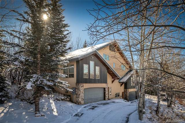 2533 Longthong Road, Steamboat Springs, CO 80487 (#7230080) :: The Colorado Foothills Team | Berkshire Hathaway Elevated Living Real Estate