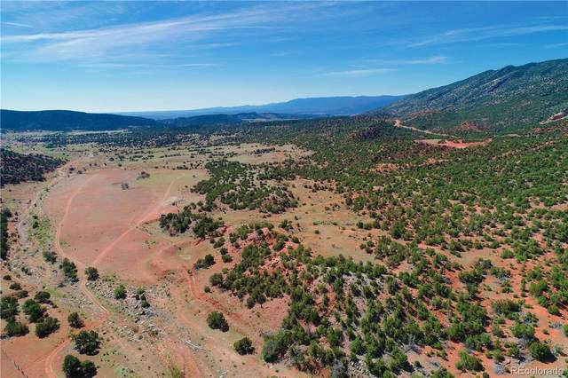 County Road 69, Canon City, CO 81215 (#7231124) :: The Gilbert Group
