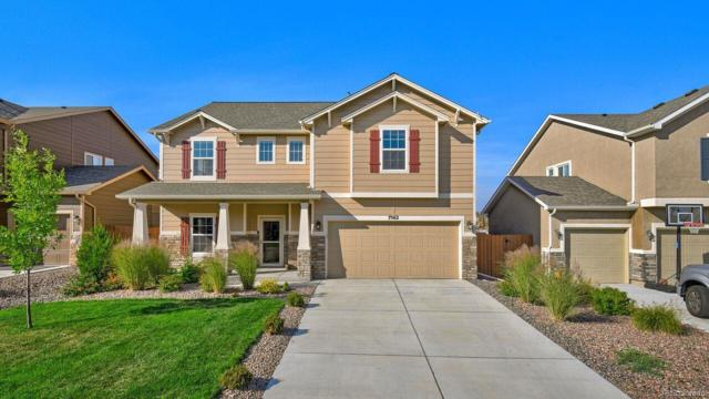 7562 Calm Oasis Place, Colorado Springs, CO 80922 (#7234124) :: The Healey Group