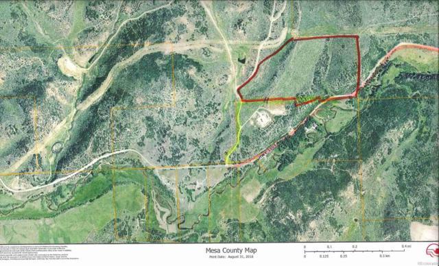 E 330 Highway, Collbran, CO 81624 (#7236998) :: Ben Kinney Real Estate Team