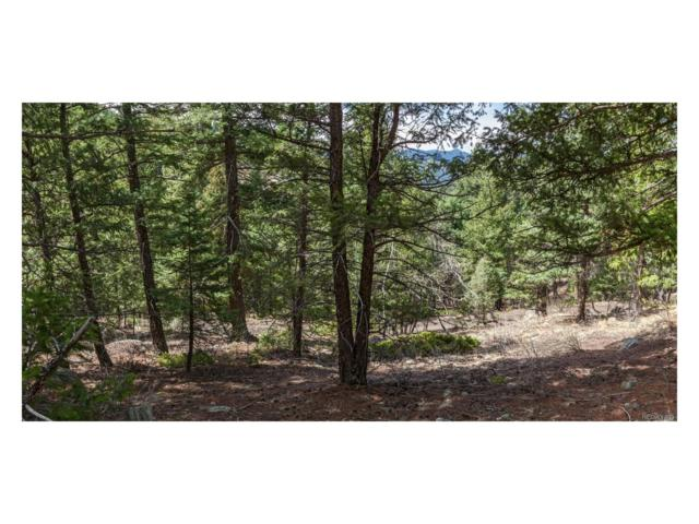 Tbd Fern Gulch Road, Evergreen, CO 80439 (MLS #7238099) :: 8z Real Estate