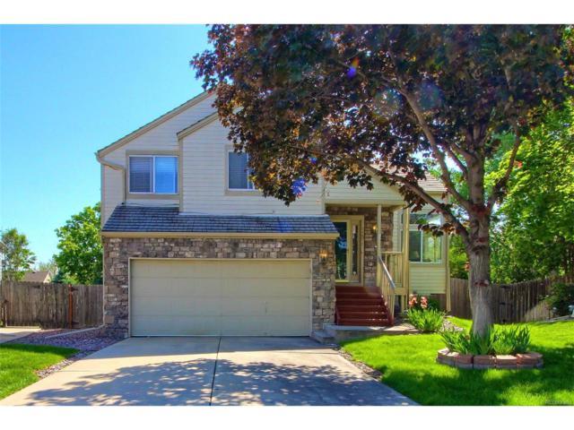 11571 Hooker Court, Westminster, CO 80031 (MLS #7239887) :: 8z Real Estate