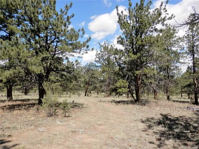350 Maricopa Trail, Hartsel, CO 80449 (MLS #7240501) :: 8z Real Estate
