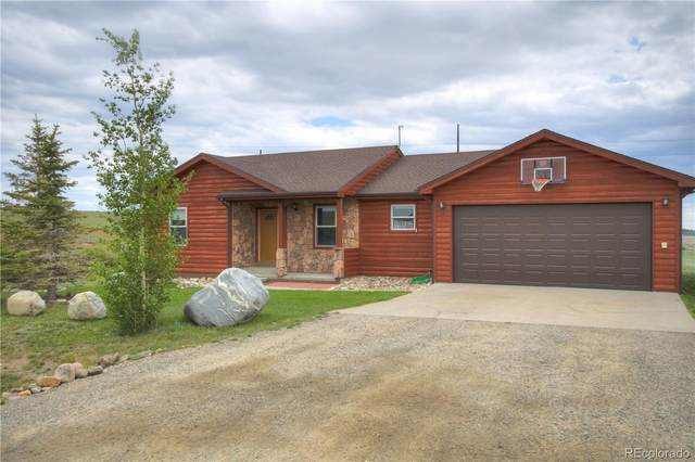1319 Meadow Drive, Fairplay, CO 80440 (#7242976) :: The Colorado Foothills Team | Berkshire Hathaway Elevated Living Real Estate