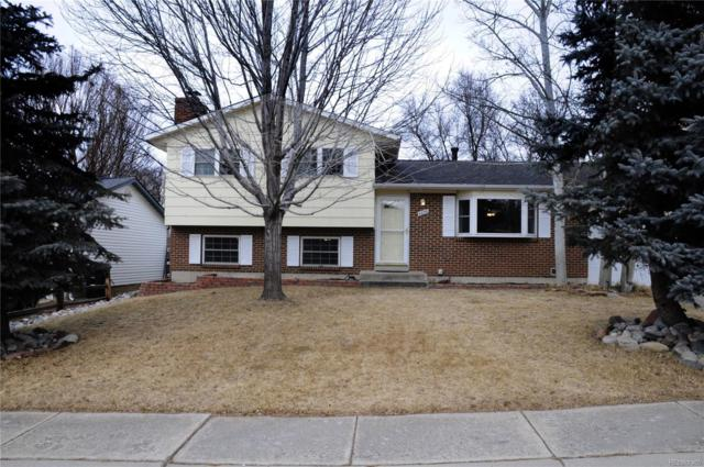 4856 Portrait Place, Colorado Springs, CO 80917 (MLS #7248861) :: Bliss Realty Group
