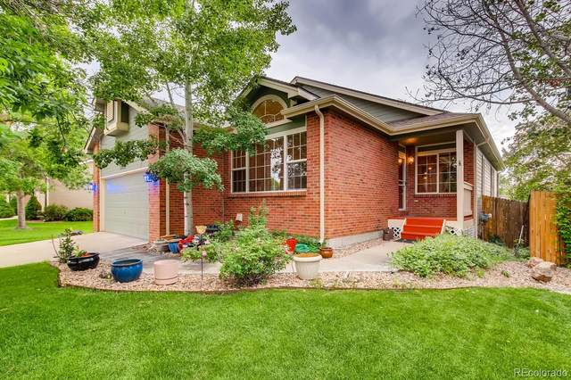 13473 Williams Street, Thornton, CO 80241 (MLS #7249855) :: Bliss Realty Group