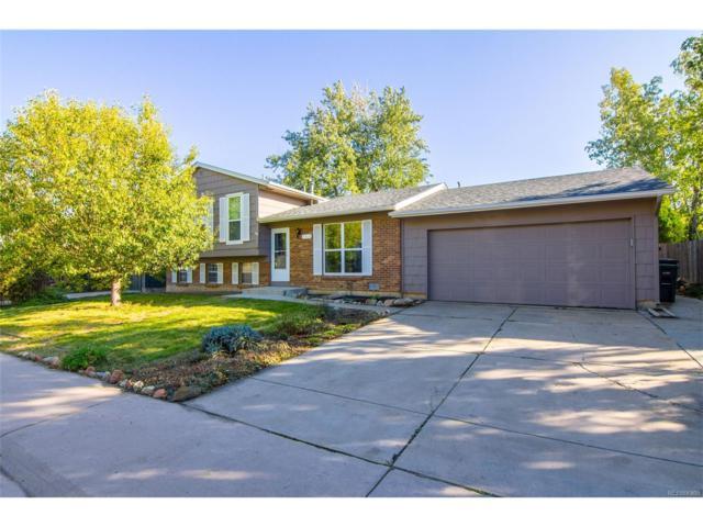 113 Bass Circle, Lafayette, CO 80026 (MLS #7249887) :: 8z Real Estate