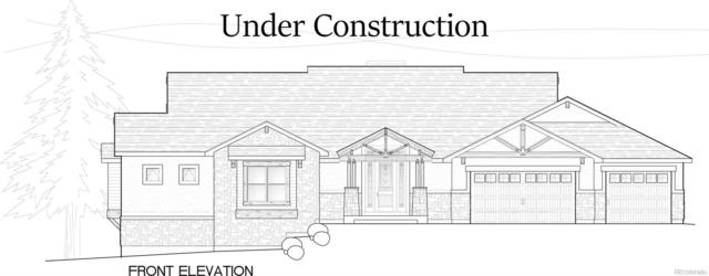 1225 Cottontail Trail, Woodland Park, CO 80863 (#7254933) :: The DeGrood Team