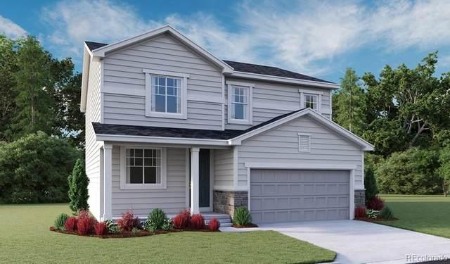 6417 Vista Cliff Loop, Castle Rock, CO 80104 (#7255626) :: Portenga Properties