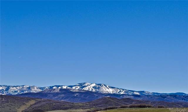 23560 Spur Trail, Steamboat Springs, CO 80487 (#7259172) :: Mile High Luxury Real Estate