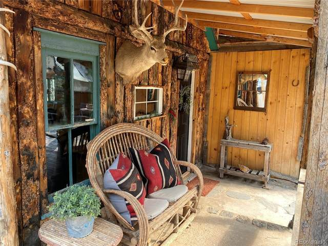 28368 Park Avenue, Pine, CO 80470 (#7263673) :: Berkshire Hathaway HomeServices Innovative Real Estate