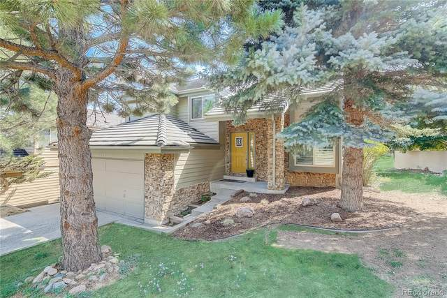 6453 Willow Broom Trail, Littleton, CO 80125 (#7264600) :: The DeGrood Team