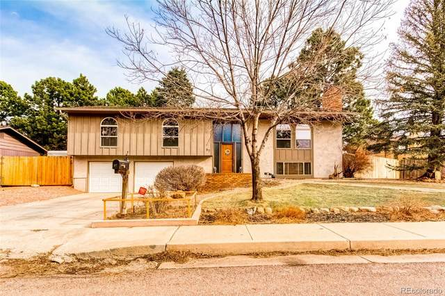 87 Raven Hills Court, Colorado Springs, CO 80919 (MLS #7266253) :: Find Colorado