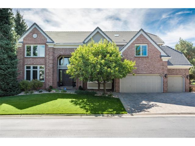 51 Falcon Hills Drive, Highlands Ranch, CO 80126 (#7268945) :: The Sold By Simmons Team