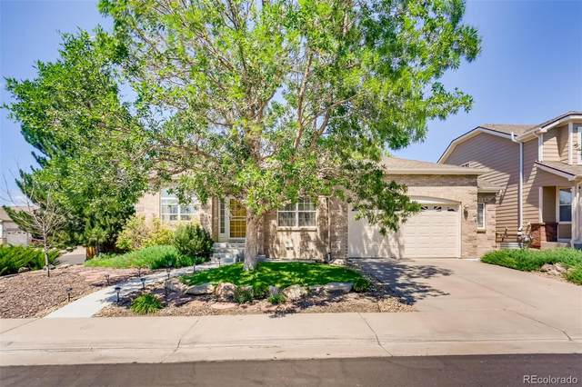 3991 Stampede Drive, Castle Rock, CO 80104 (#7273884) :: The Harling Team @ Homesmart Realty Group