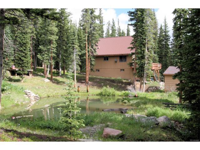 153 El Lobo Lane, Fairplay, CO 80440 (MLS #7274023) :: 8z Real Estate