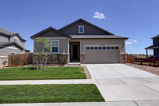 10120 Mobile Street, Commerce City, CO 80022 (#7277968) :: The Peak Properties Group