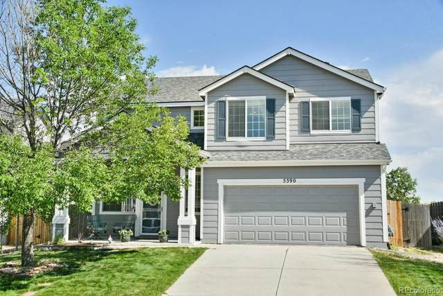 5390 Suffolk Avenue, Castle Rock, CO 80104 (#7278488) :: Peak Properties Group