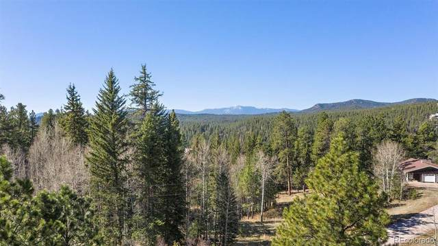 34667 Circle Drive, Pine, CO 80470 (#7282430) :: Berkshire Hathaway Elevated Living Real Estate