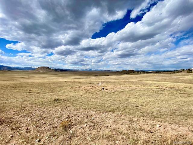 552 Bridle Path, Hartsel, CO 80449 (MLS #7286544) :: 8z Real Estate