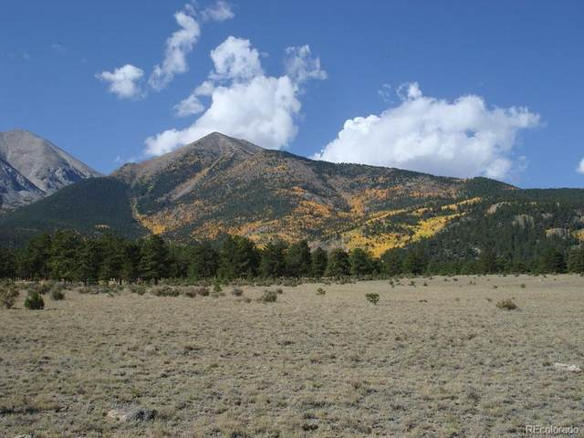 26581 County Road 339, Buena Vista, CO 81211 (MLS #7289962) :: 8z Real Estate