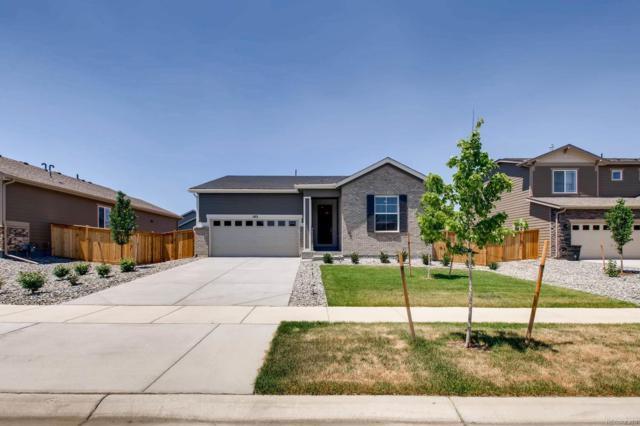 183 S Kewaunee Way, Aurora, CO 80018 (MLS #7291989) :: 8z Real Estate