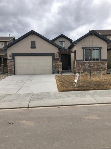 17648 Leisure Lake Drive, Monument, CO 80132 (#7292646) :: Harling Real Estate