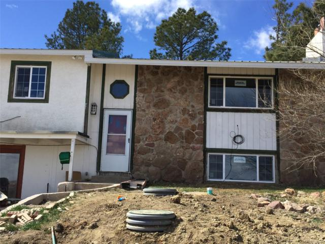 21001 County Road 73, Calhan, CO 80808 (#7292716) :: Hometrackr Denver